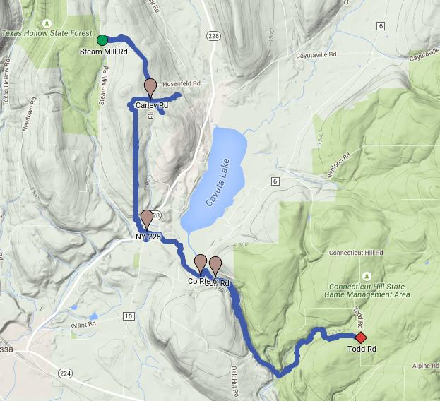 FLT Map