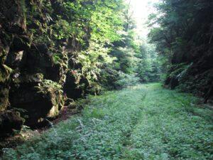 Rock Cut on Old O&W Railroad