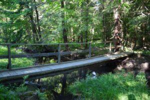Mahlon's Bridge
