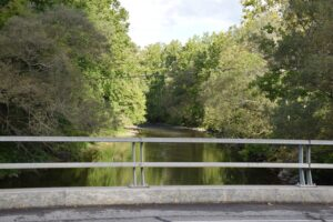 Cohocton River on Knight Settlement Road