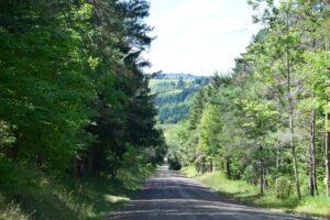 McCaddam Road