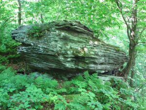 Large boulder east of Beecher Lake overlook