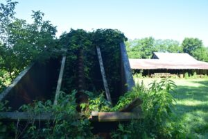 Vines overgrowing a large metal bin with a large auger