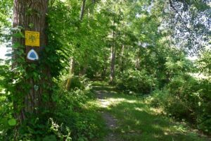 FLT and NCT signs on the Genesee Valley Greenway