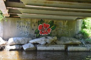 Graffiti found under bridge over East Koy Creek on Overholt Rd