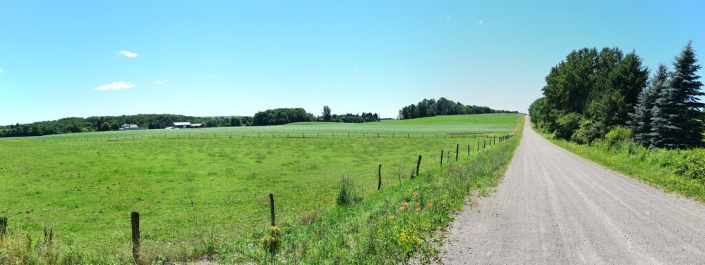 Panoramic view looking south-east across field on Graham Rd
