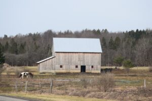 Barn near intersection of NY 98 and Kingsbury Hill Rd