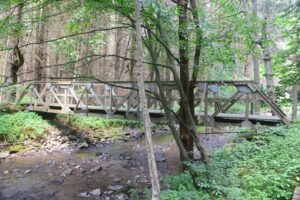 Footbridge over a stream east of W. Branch Bucktooth Hollow Rd