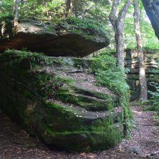 Trail winding around large boulders in Little Rock City