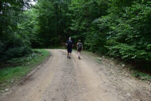 Chase and Zoe walking down a logging road north of Sawmill Run Rd